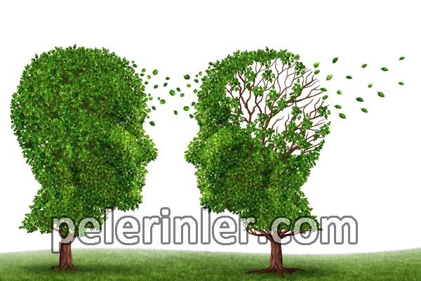 Alzheimer riskini en aza indirme, Alzheimer belirtileri nelerdir, Alzheimer beslenme ile ortadan kalkar mı